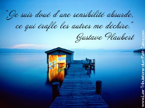 Je suis doué d'une sensibilité absurde, ce qui érafle les autres me déchire, Gustave Flaubert