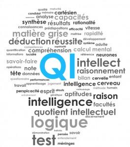 [VIDÉO] Le QI, histoire d'une imposture (France 5, août 2011)