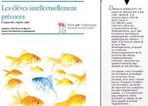 Les élèves intellectuellement précoces, guide Académie de la Réunion