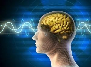 Syndrome d'Asperger & autisme : des différences cérébrales identifiées