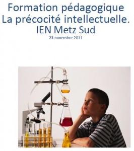 Le bilan psychologique, par l'IEN Metz Sud (format PDF)