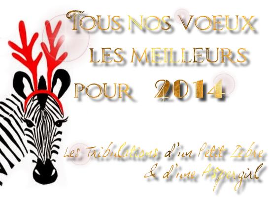 Tous nos vœux pour 2014 :)