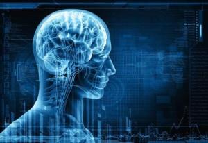 La variation de l'épaisseur du cortex influence le QI des individus (JournalDeMontréal, mars 2014)