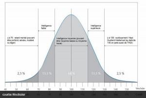 Votre QI reflète-t-il votre intelligence ? (FranceTVInfo, mars 2014)