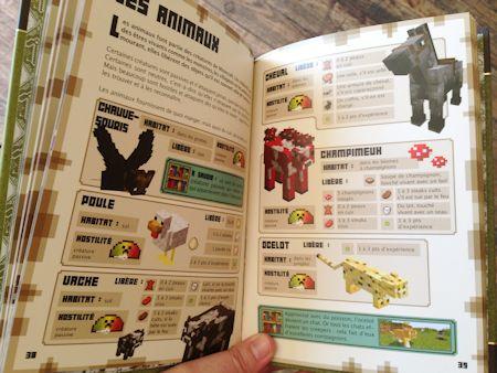 L'intérieur du guide officiel