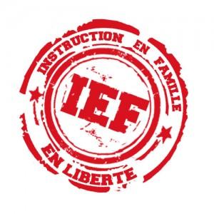 Organisation de cette année de 3ème en IEF, par le biais du CNED