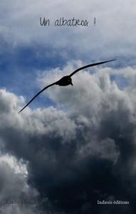 Un albatros ! par Landry Mestrallet