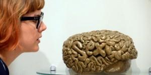 Neurosciences : le mystère des surdoués... par accident (Sciences & Avenir, décembre 2014)