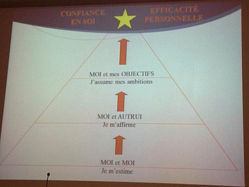 Modélisation systémique de la réussite sportive : compétences & entraînement mental, partenaires de l'optimisation des performances