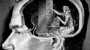 Comment notre cerveau fait le tri entre utile et inutile pour nous permettre d'agir et de penser (Atlantico, août 2015)
