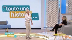 [VIDÉO] Les zèbres, surdoués, HPI à l'honneur dans Toute une histoire (France 2, octobre 2015)