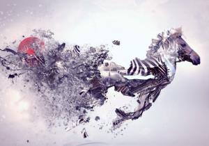 Le grand zèbre : les HP expliqués au HP adultes (Repairage.ch, novembre 2015)