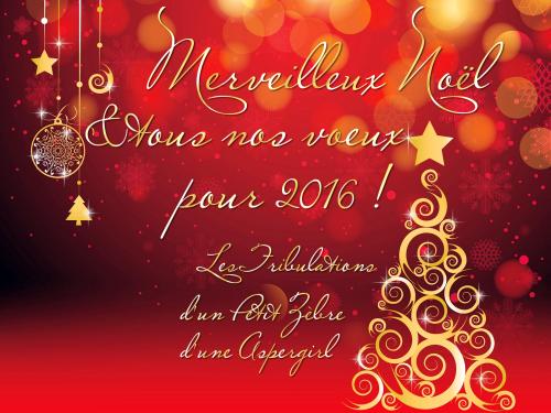 Les Tribulations vous souhaitent un Joyeux Noël & de belles fêtes ;)