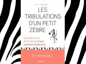 Les tribulations d'un petit zèbre (Le Cheval à Rayures, juin 2016)