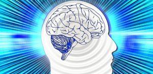 Les jeux pour booster le QI des adultes sont-ils inutiles ? (Sciences & Avenir, juillet 2016)