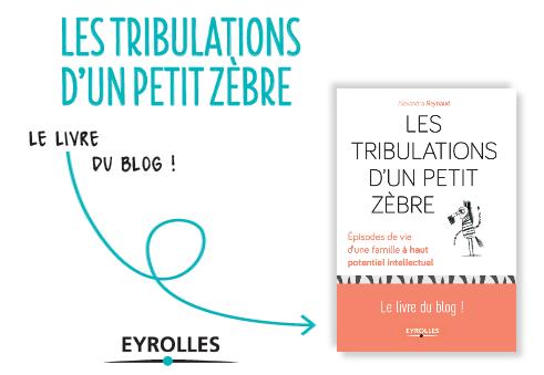 Blog Les Tribulations D Un Petit Zebre Cout D Un Bilan Psychologique