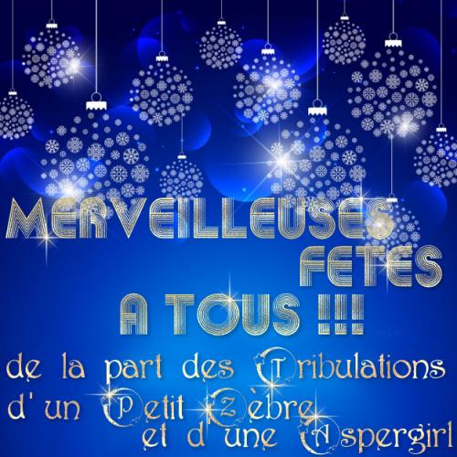 Les Tribulations d'un Petit Zèbre & d'une Aspergirl vous souhaitent de belles fêtes de fin d'année